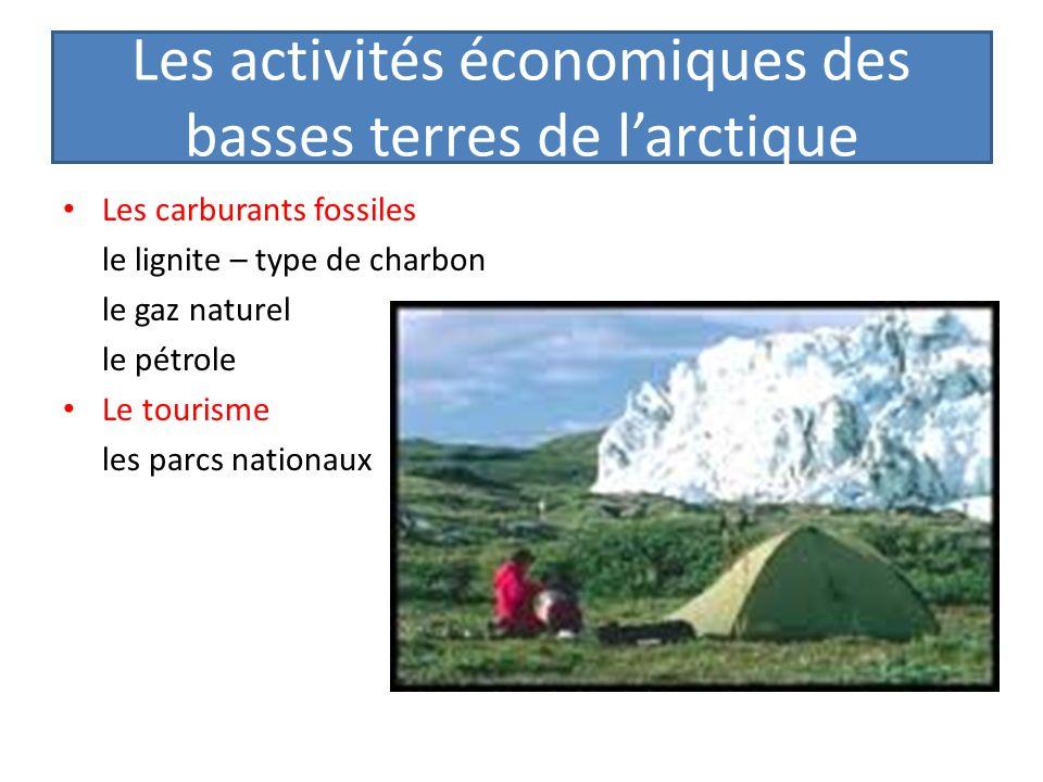 Les activités économiques des basses terres de larctique Les carburants fossiles le lignite – type de charbon le gaz naturel le pétrole Le tourisme le