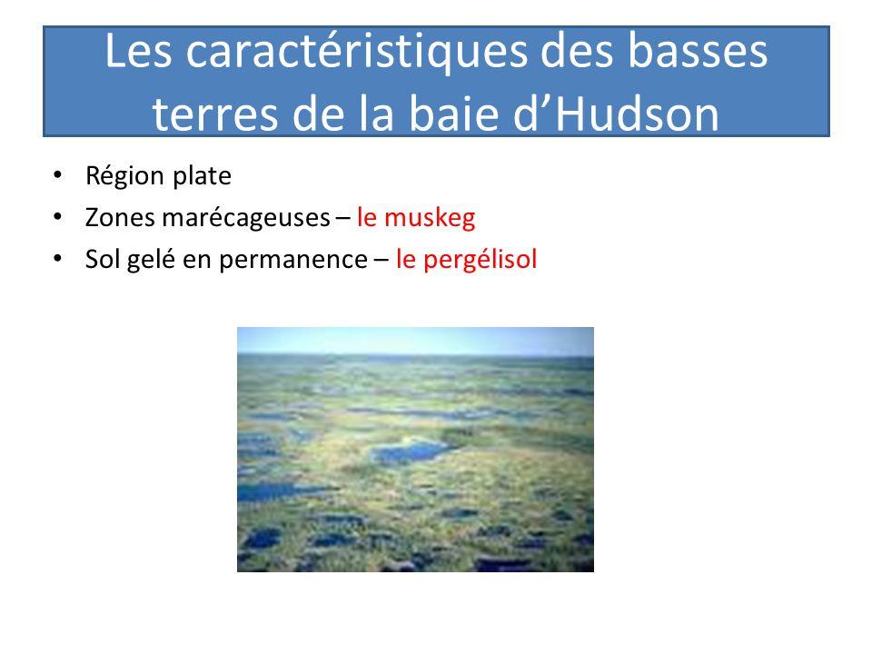 Les caractéristiques des basses terres de la baie dHudson Région plate Zones marécageuses – le muskeg Sol gelé en permanence – le pergélisol