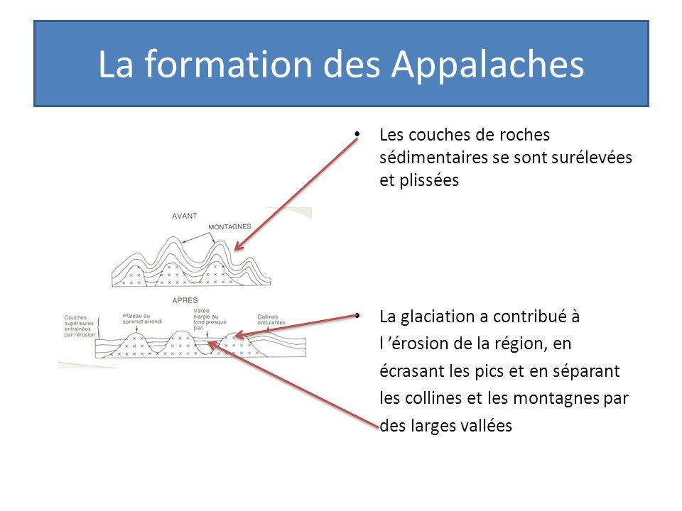 La formation des Appalaches Les couches de roches sédimentaires se sont surélevées et plissées La glaciation a contribué à l érosion de la région, en