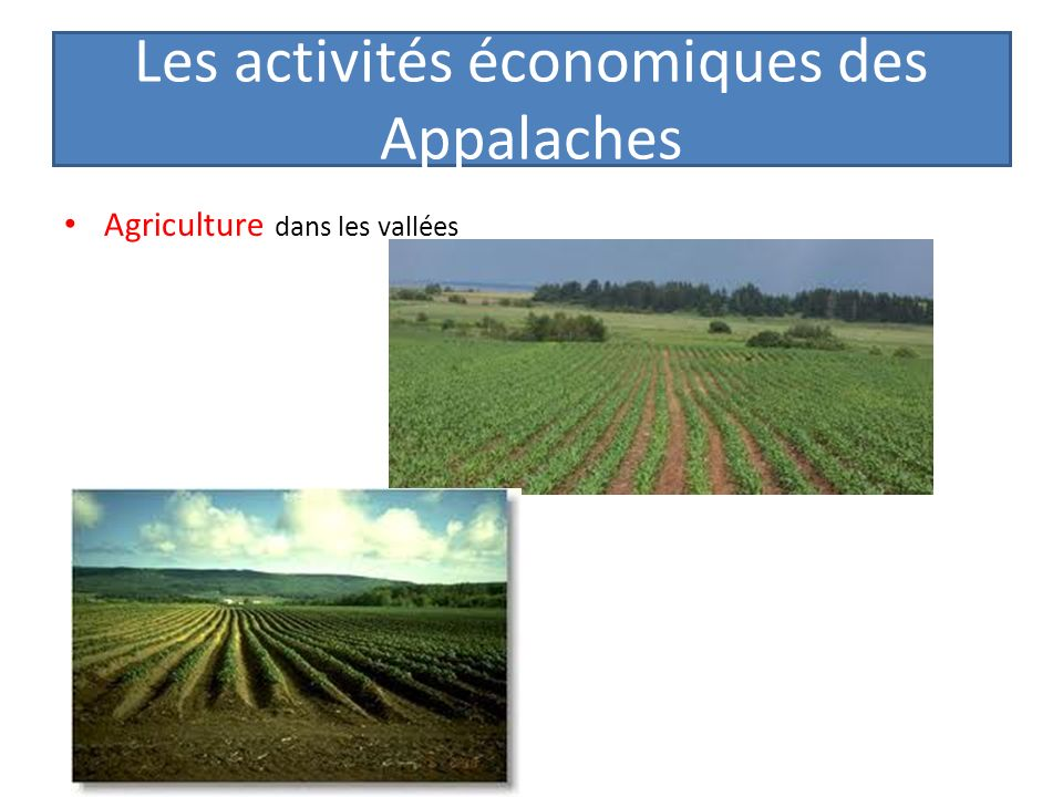 Les activités économiques des Appalaches Agriculture dans les vallées