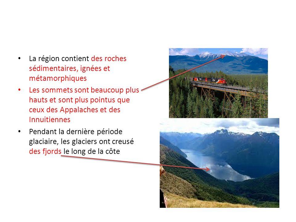 La région contient des roches sédimentaires, ignées et métamorphiques Les sommets sont beaucoup plus hauts et sont plus pointus que ceux des Appalache