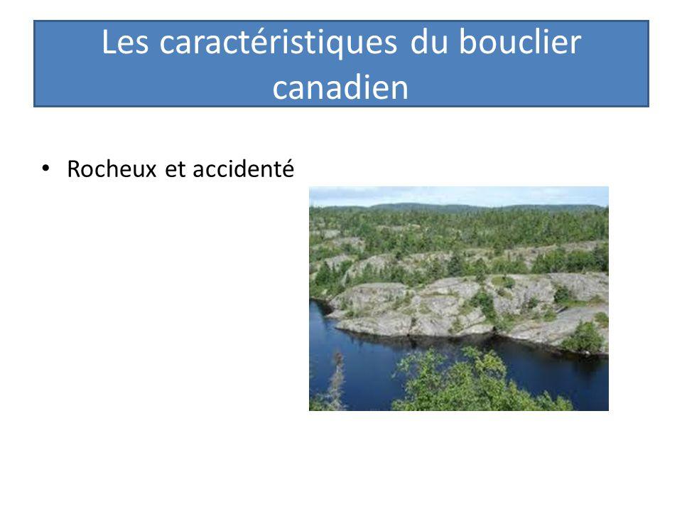 Les basses terres du Saint Laurent