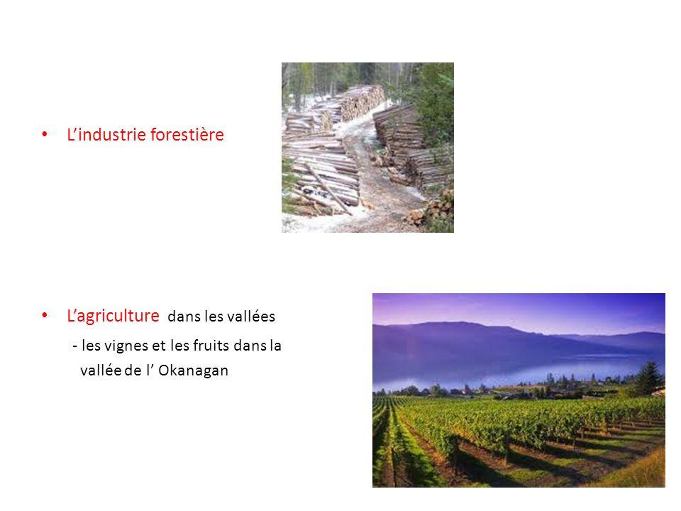 Lindustrie forestière Lagriculture dans les vallées - les vignes et les fruits dans la vallée de l Okanagan