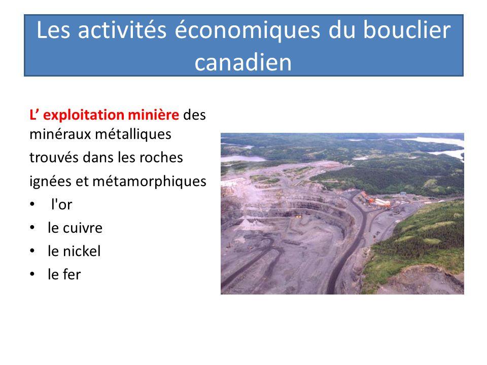 Les activités économiques du bouclier canadien L exploitation minière des minéraux métalliques trouvés dans les roches ignées et métamorphiques l'or l