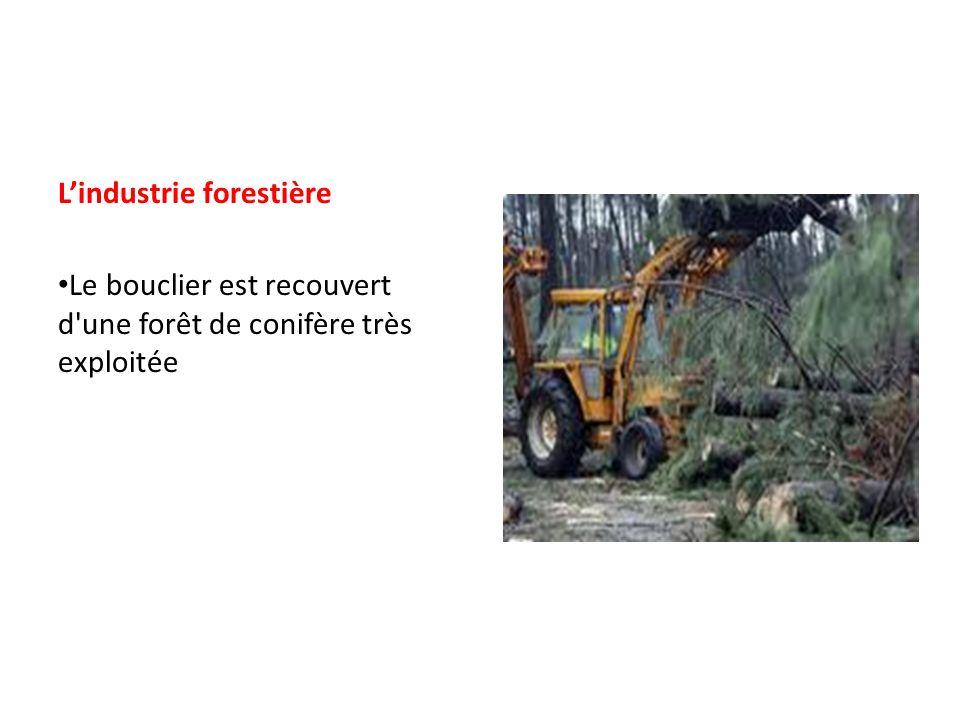 Lindustrie forestière Le bouclier est recouvert d'une forêt de conifère très exploitée