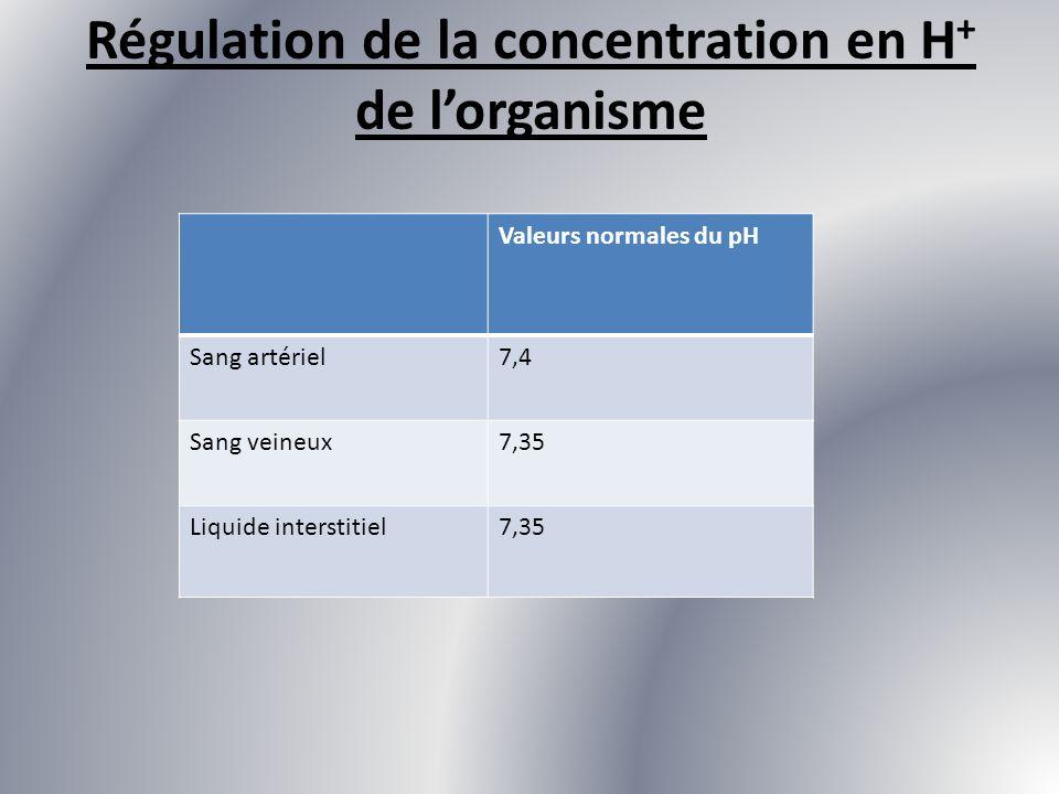 Régulation de la concentration en H + de lorganisme Valeurs normales du pH Sang artériel7,4 Sang veineux7,35 Liquide interstitiel7,35