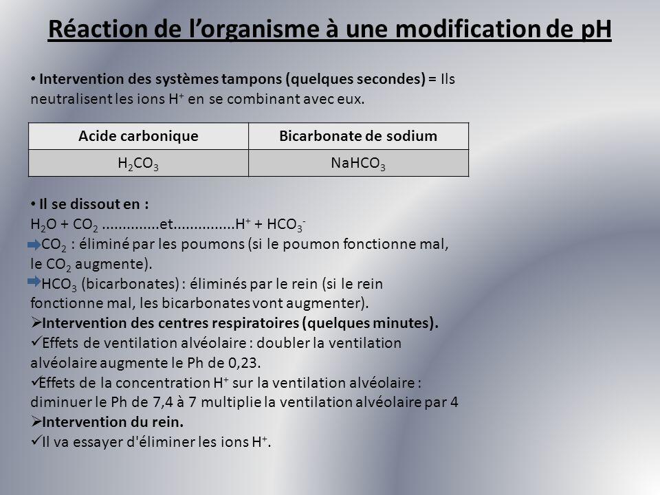 Intervention des systèmes tampons (quelques secondes) = Ils neutralisent les ions H + en se combinant avec eux. Acide carboniqueBicarbonate de sodium