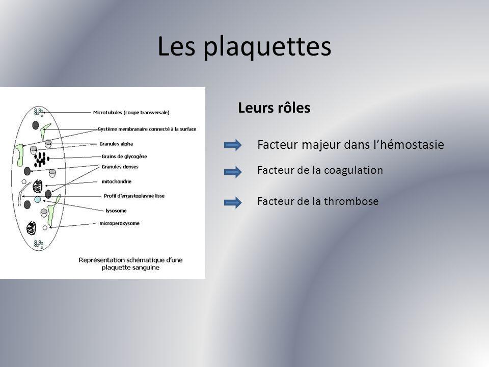 Les plaquettes Leurs rôles Facteur majeur dans lhémostasie Facteur de la coagulation Facteur de la thrombose