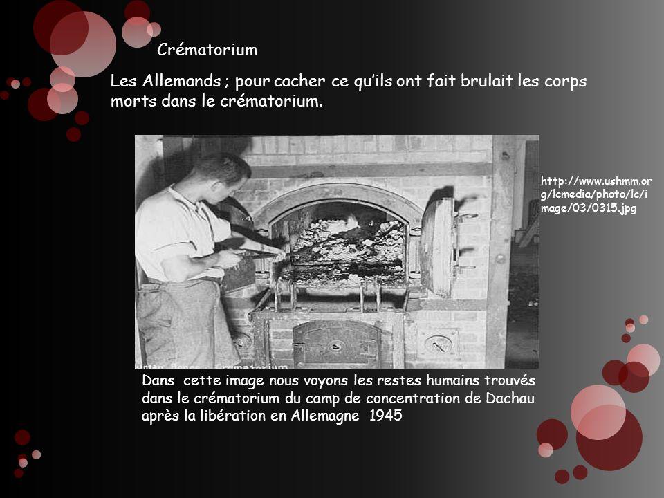 Les Allemands ; pour cacher ce quils ont fait brulait les corps morts dans le crématorium. http://www.ushmm.or g/lcmedia/photo/lc/i mage/03/0315.jpg D