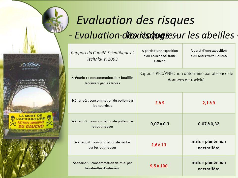 - Toxicologie -- Evaluation des risques sur les abeilles - Evaluation des risques Rapport du Comité Scientifique et Technique, 2003 A partir dune expo