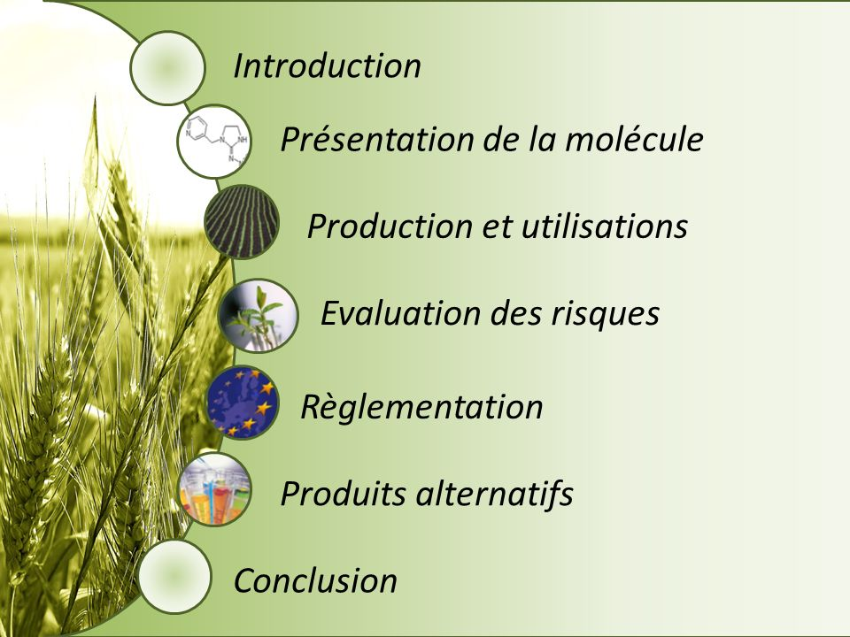 Introduction Présentation de la molécule Production et utilisations Evaluation des risques Règlementation Produits alternatifs Conclusion