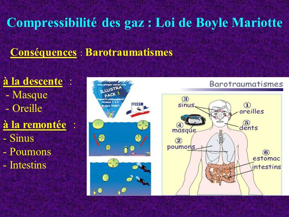 Compressibilité des gaz : Loi de Boyle Mariotte Conséquences : Barotraumatismes à la descente : - Masque - Oreille à la remontée : - Sinus - Poumons -