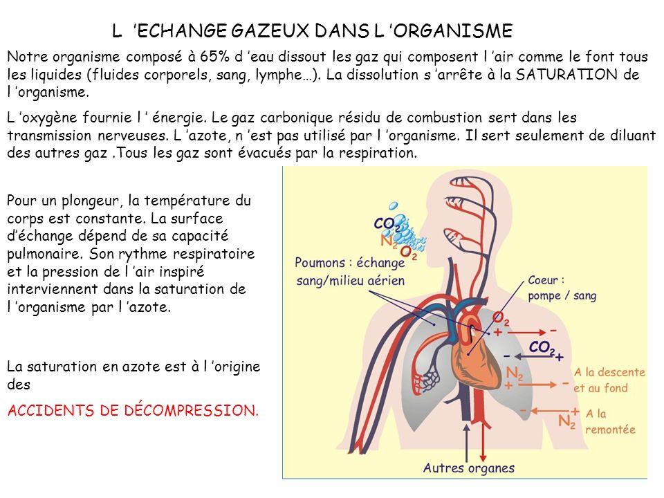 L ECHANGE GAZEUX DANS L ORGANISME L oxygène fournie l énergie.