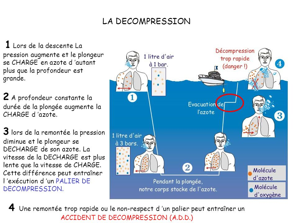 LA DECOMPRESSION ET SES ACCIDENTS