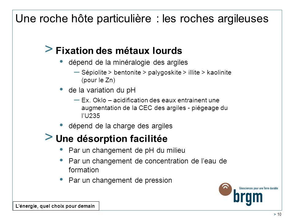 > Fixation des métaux lourds dépend de la minéralogie des argiles – Sépiolite > bentonite > palygoskite > illite > kaolinite (pour le Zn) de la variat