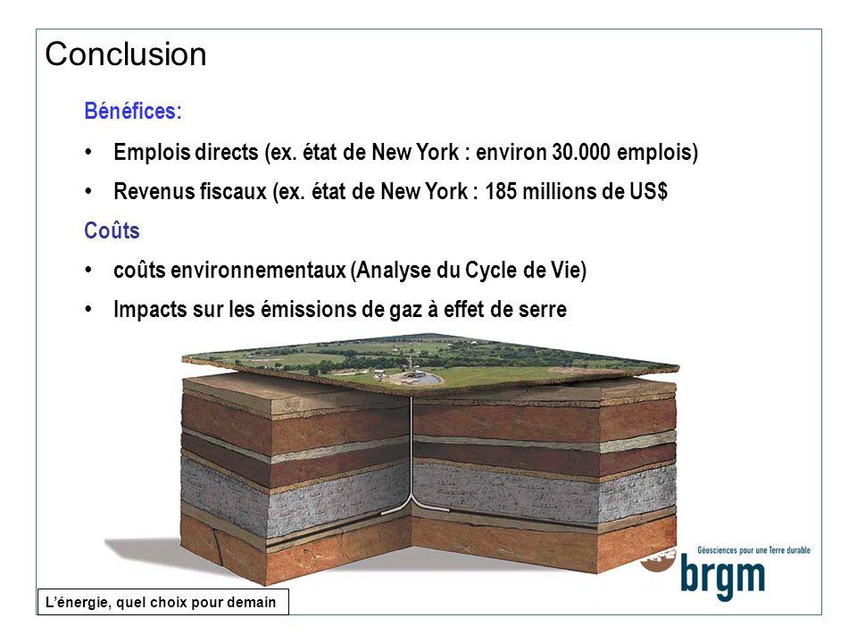 Bénéfices: Emplois directs (ex. état de New York : environ 30.000 emplois) Revenus fiscaux (ex. état de New York : 185 millions de US$ Coûts coûts env