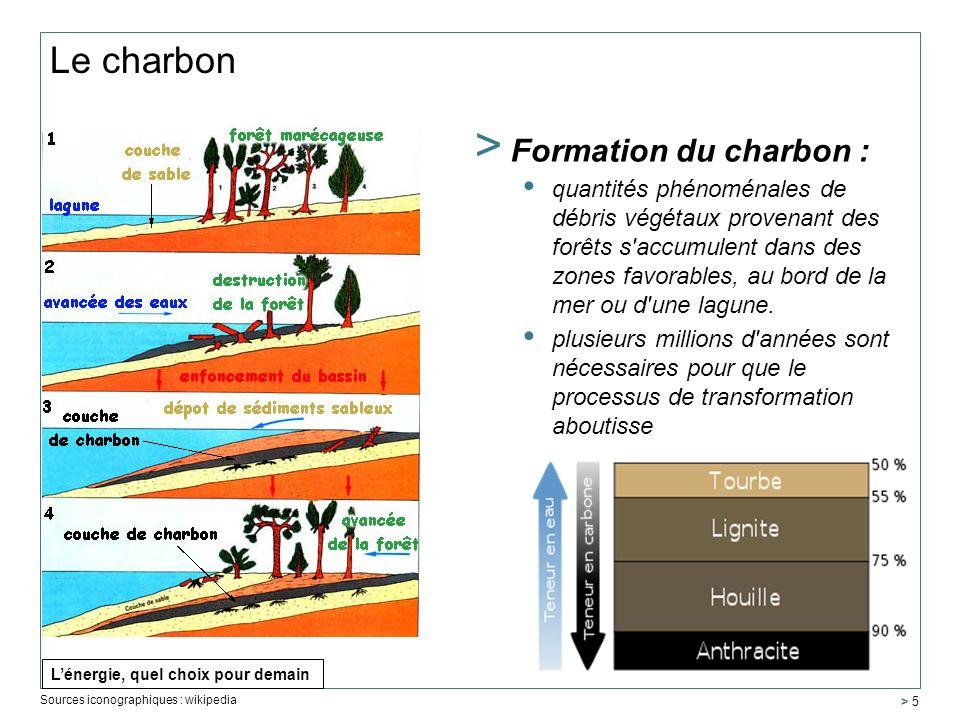 Le charbon > Formation du charbon : quantités phénoménales de débris végétaux provenant des forêts s'accumulent dans des zones favorables, au bord de