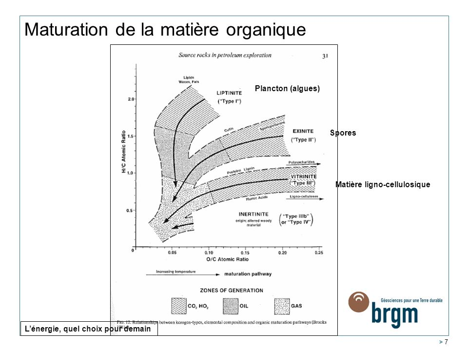 Maturation de la matière organique > 7 Plancton (algues) Spores Matière ligno-cellulosique Lénergie, quel choix pour demain