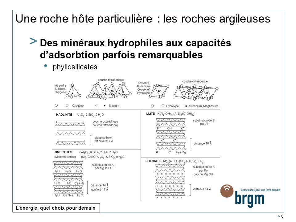Une roche hôte particulière : les roches argileuses > Des minéraux hydrophiles aux capacités dadsorbtion parfois remarquables phyllosilicates > 8 Léne
