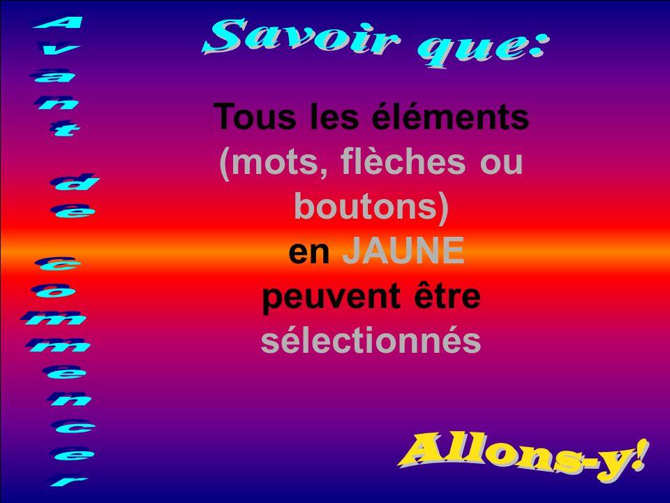 Tous les éléments (mots, flèches ou boutons) en JAUNE peuvent être sélectionnés