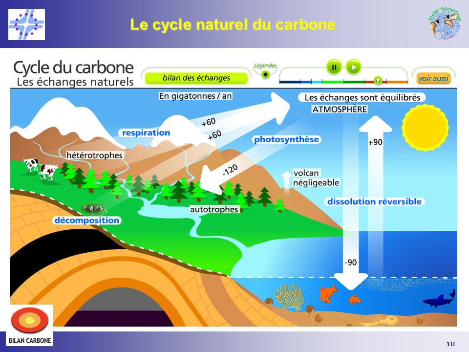 10 Le cycle naturel du carbone