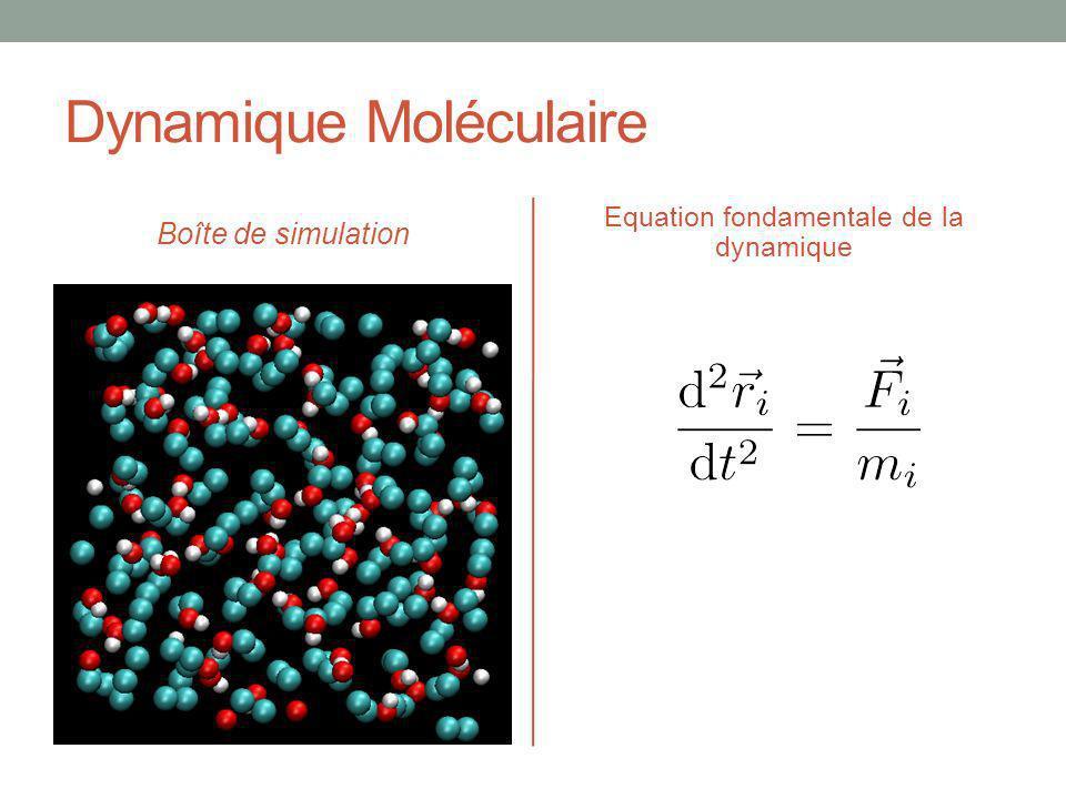 Dynamique Moléculaire Boîte de simulation Equation fondamentale de la dynamique