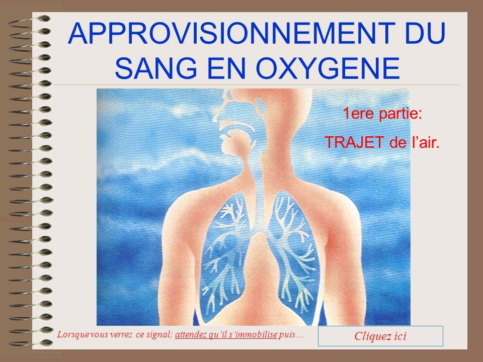 TRAJET DE LAIR La teneur en azote augmente: La teneur en oxygène diminue La teneur en dioxyde de carbone augmente.