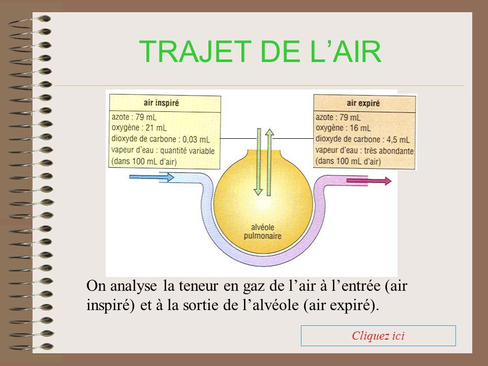 TRAJET DE LAIR On analyse la teneur en gaz de lair à lentrée (air inspiré) et à la sortie de lalvéole (air expiré).
