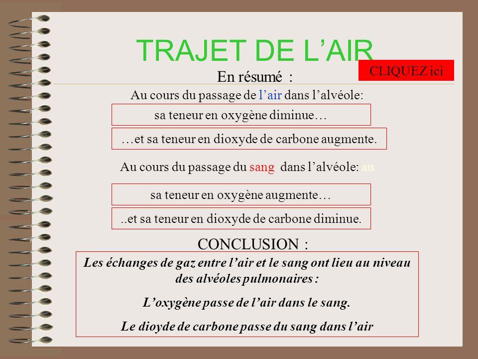 TRAJET DE LAIR En résumé : Au cours du passage de lair dans lalvéole: …et sa teneur en dioxyde de carbone augmente.