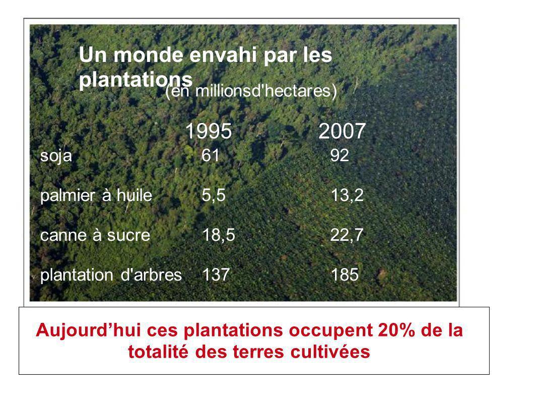 Un monde envahi par les plantations 19952007 (en millionsd hectares) soja palmier à huile canne à sucre plantation d arbres 61 5,5 18,5 137 92 13,2 22,7 185 Aujourdhui ces plantations occupent 20% de la totalité des terres cultivées