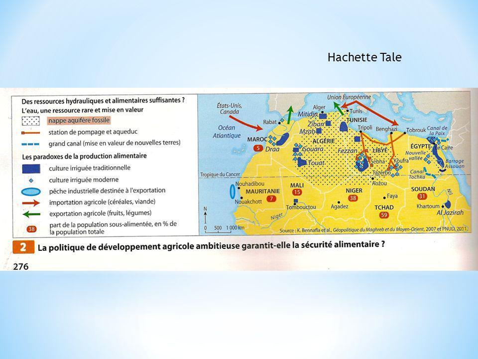 Hachette Tale