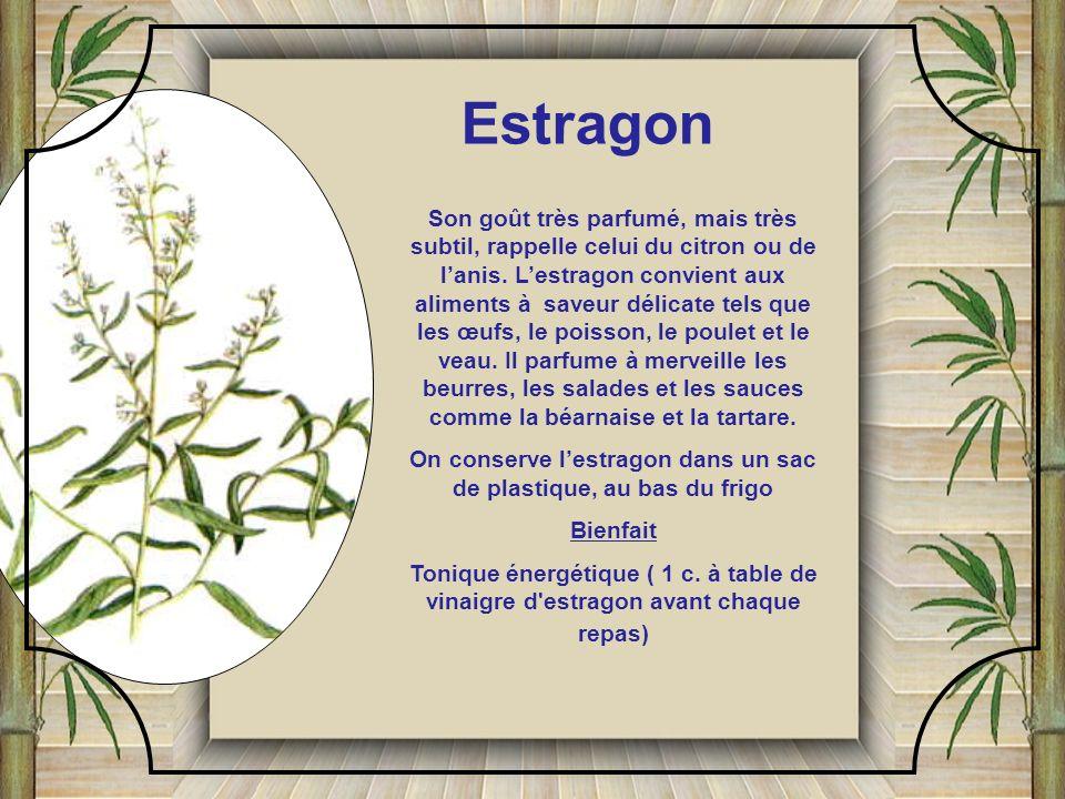 Particulièrement décoratif, le cresson apporte une note d'un vert lumineux, aux entrées comme aux plats de résistance, sa saveur convient très bien à