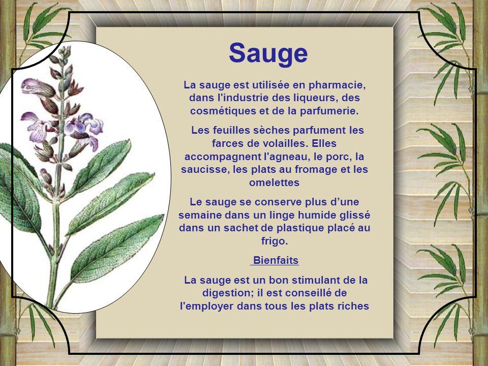 La sarriette est une plante aromatique. Les feuilles sont utilisées pour garnir les salades ou les grillades. Il y deux sortes de sarriette: une est c