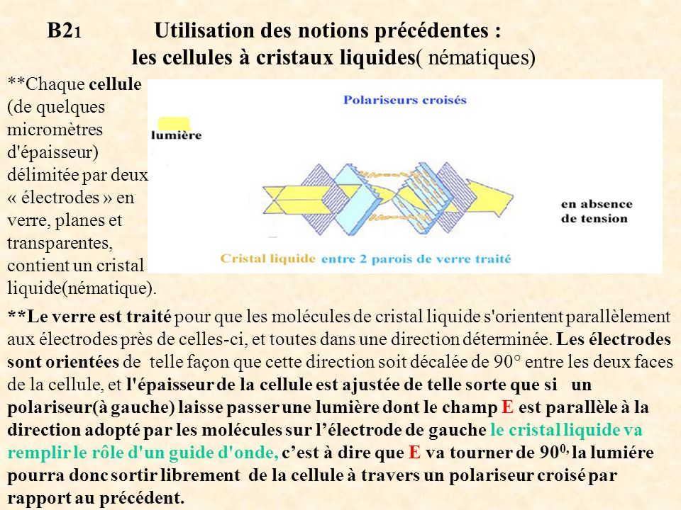 B2 1 Utilisation des notions précédentes : les cellules à cristaux liquides( nématiques) **Chaque cellule (de quelques micromètres d'épaisseur) délimi