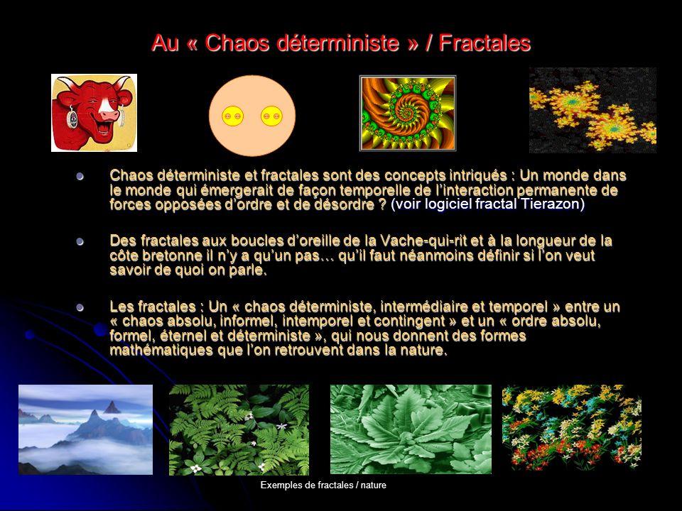Au « Chaos déterministe » / Fractales Chaos déterministe et fractales sont des concepts intriqués : Un monde dans le monde qui émergerait de façon tem