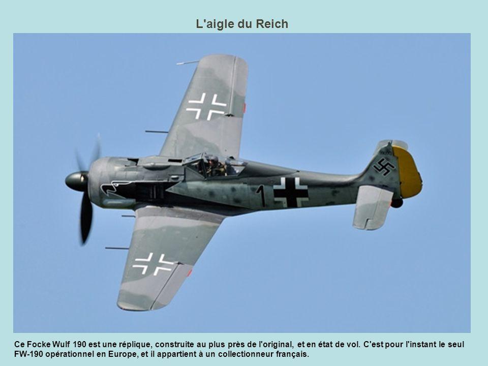 L âne, la mouche et le rat Ce n est pas une fable de La Fontaine, mais la liste des surnoms de cet avion étonnant : le Polikarpov I-16.