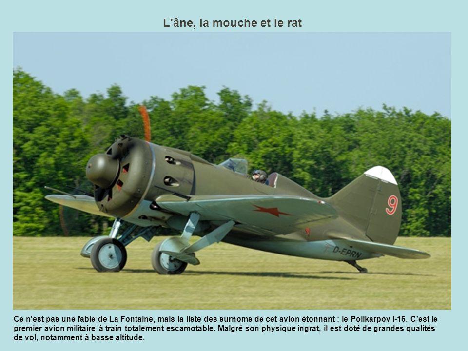 La passion des bénévoles L Amicale Jean Baptiste Salis, qui gère les installations de La Ferté Alais, le musée et les ateliers, est une grande famille de passionnés d aviation.