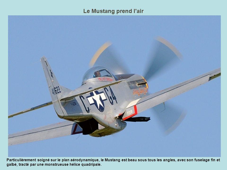 Léon et son Focke-Wulf ont volé L an dernier, les spectateurs sont repartis un peu frustrés du meeting : le FW-190, qui en était la vedette, n avait pas volé, à cause d un problème de train d atterrissage.