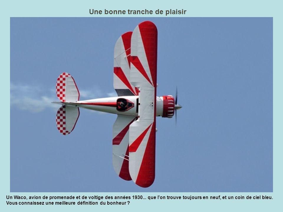 Arsenal volant Truffé de mitrailleuses, le bimoteur B-25 Mitchell fait face au public de La Ferté.
