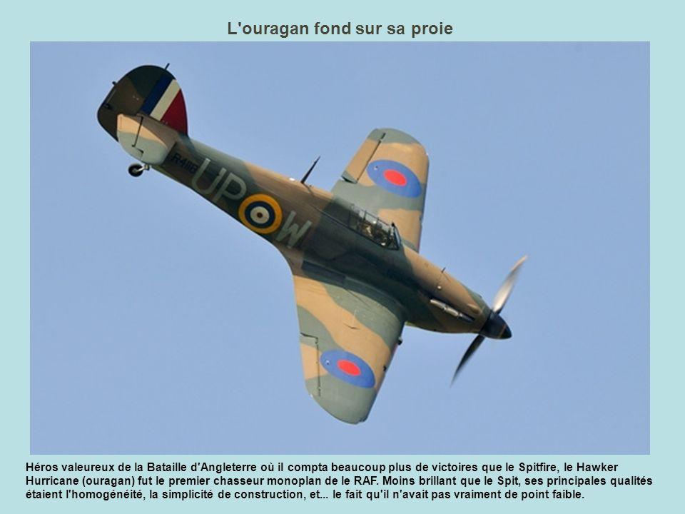 Normandie Niemen Ce Yak 11 décoré aux couleurs du Normandie Niemen est un classique de La Ferté.
