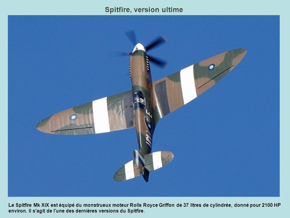 160 kg, pilote compris Equipé de deux moteurs de tronçonneuse (15 cv), le Cri-Cri est le plus petit avion bimoteur du monde.