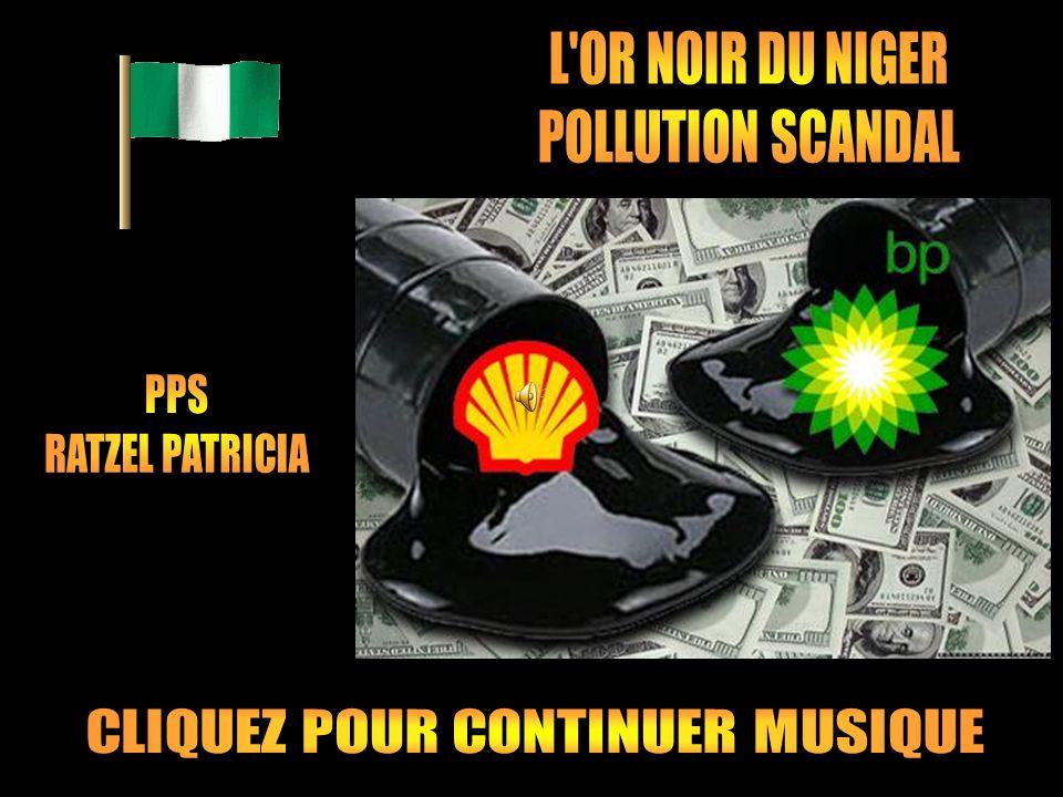 Face à la pollution pétrolière colossale qui dégrade le delta du Niger, dans le sud du Nigeria, la responsabilité de la compagnie Shell avait été établie.