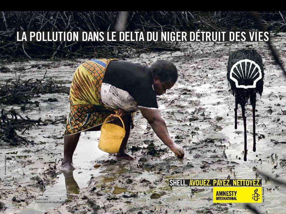« Shell n'a pas fait ce qu'il fallait pour empêcher le pétrole de se répandre et polluer la terre des plaignants », a rétorqué Me Channa Samkalden, l'