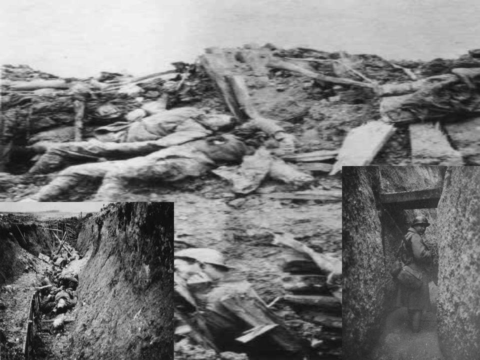 1917 année de tous les dangers Dans les tranchées, les fantassins sont minés par les maladies, le froid et les poux; ils survivent dans l attente angoissée d une attaque ennemie, ou d un ordre de leurs propres officiers de monter à l assaut.