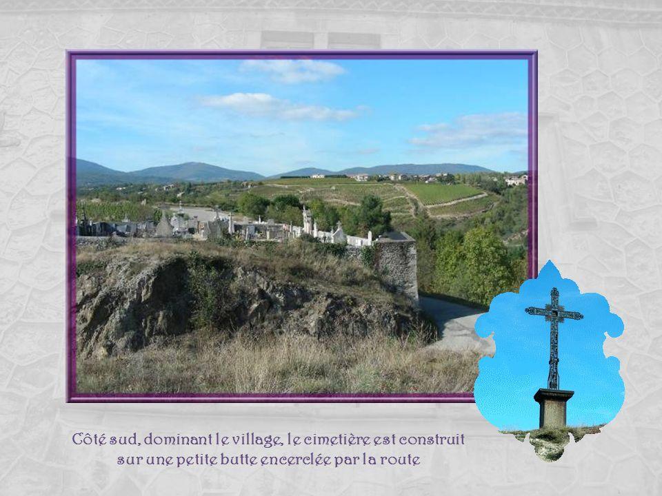 Les vignes des « Côtes du Rhône » : pas question déquipement motorisé! Au loin, au bord du Rhône, Péage du Roussillon.