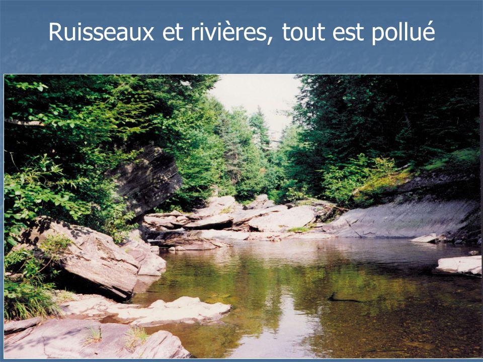 Ruisseaux et rivières, tout est pollué