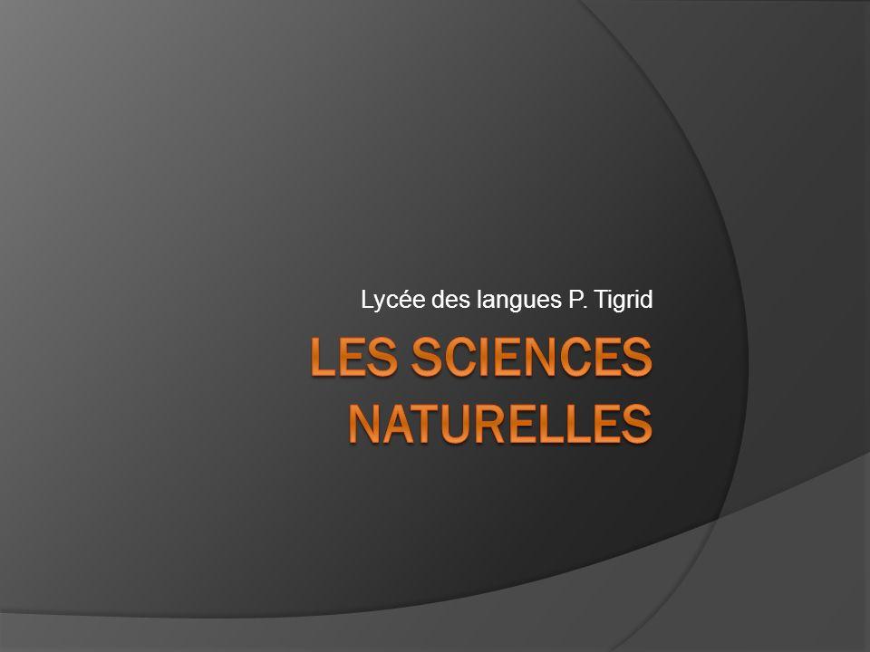 Lycée des langues P. Tigrid