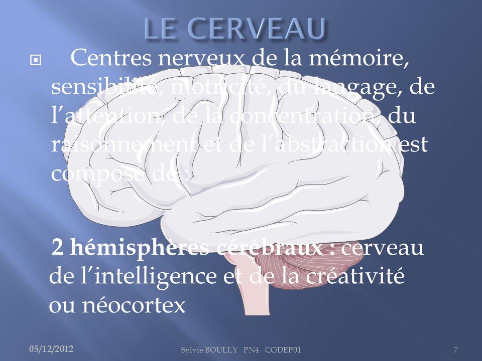 Sylvie BOULLY PN4 CODEP017 Centres nerveux de la mémoire, sensibilité, motricité, du langage, de lattention, de la concentration, du raisonnement et d