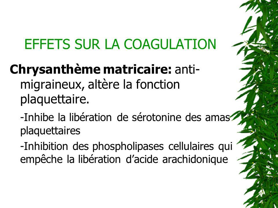 EFFETS SUR LA COAGULATION Chrysanthème matricaire: anti- migraineux, altère la fonction plaquettaire. -Inhibe la libération de sérotonine des amas pla