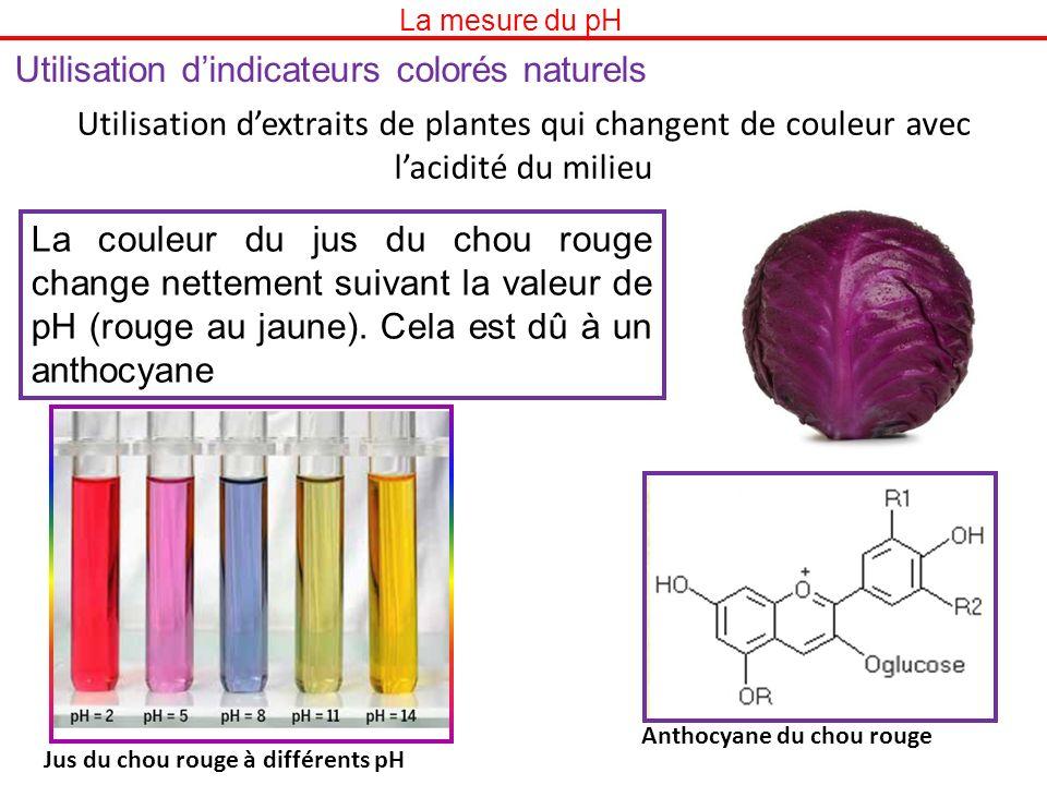 Utilisation dindicateurs colorés naturels Utilisation dextraits de plantes qui changent de couleur avec lacidité du milieu La couleur du jus du chou r